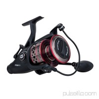 Penn Fierce II Spinning Fishing Reel   555132666