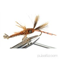 Wild Water Crayfish by, Size 2, Qty. 2